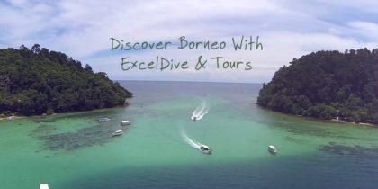 Excel Dive & Tours