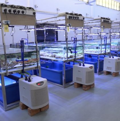 In-Land Coral Farm 'SEAFOREST'